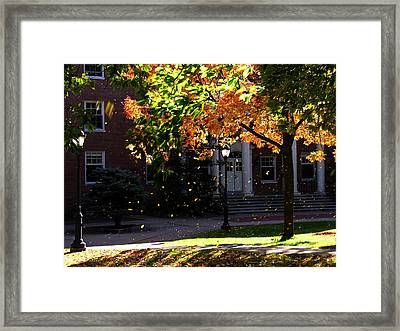 Lafayette College Easton Pa In Autumn Framed Print by Jacqueline M Lewis