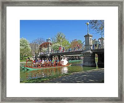 Lagoon Bridge And Swan Boat Framed Print