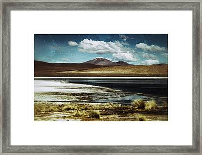 Lagoon Grass Bolivia Vintage Framed Print by For Ninety One Days