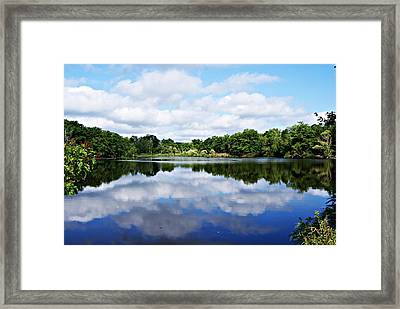 Lagoon IIi Framed Print