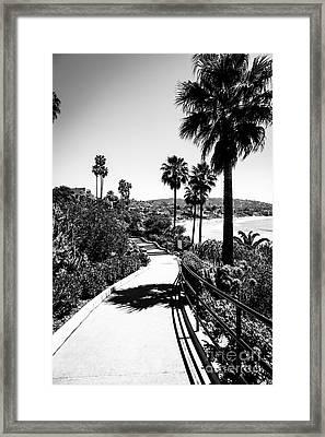 Laguna Beach Heisler Park In Black And White Framed Print by Paul Velgos