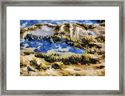 Laguna Beach Tide Pool Pattern 3 Framed Print by Scott Campbell