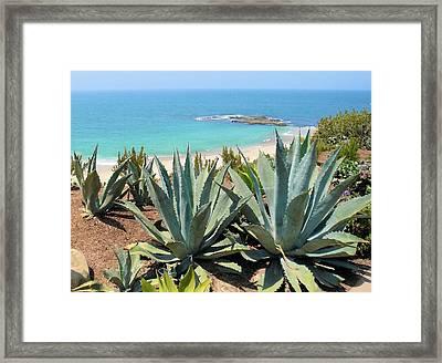 Laguna Coast With Cactus Framed Print