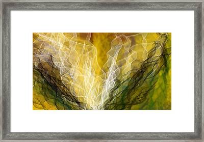 Lair Dynamics Framed Print