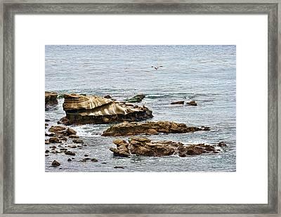 Lajolla Cove Framed Print
