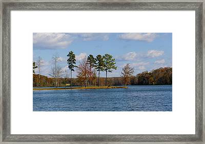 Lake Anna 4 Framed Print by David Lester