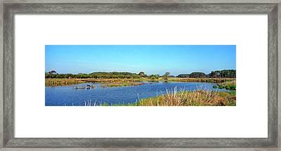 Lake At Chincoteague National Wildlife Framed Print by Panoramic Images