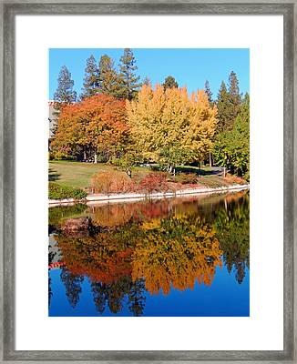 Lake At Davis Framed Print by Jim Halas