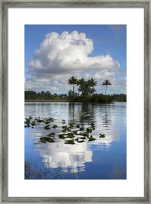Lake At The Park Framed Print