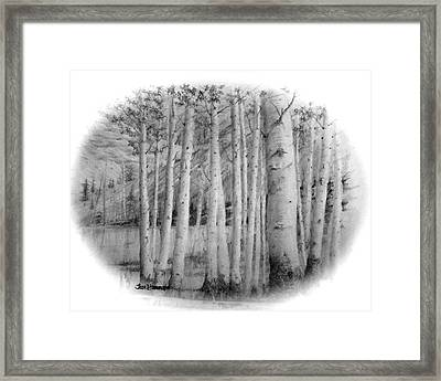 Framed Print featuring the drawing Lake Birches by Jim Hubbard