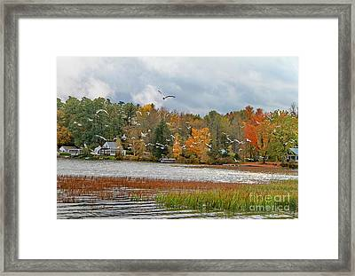 Lake Carmi Autumn 2012 Framed Print by Deborah Benoit