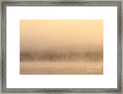 Lake Cassidy With Fog And Trees Along Shoreline Shrouded In Fog Framed Print