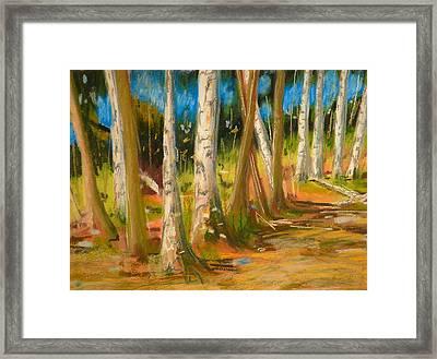 Lake Champlain Woods Framed Print by Valerie Lynch