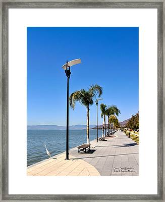 Lake Chapala - Mexico Framed Print by David Perry Lawrence