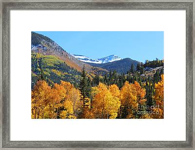 Lake City In The Fall Framed Print