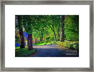 Lake Como Path Framed Print