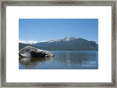 Lake Dillon Framed Print by Juli Scalzi