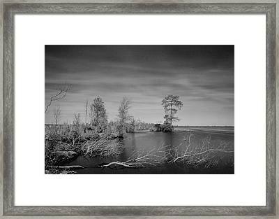 Lake Drummond Framed Print