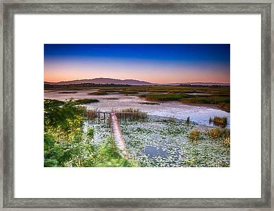 Lake Efteni Framed Print by Okan YILMAZ