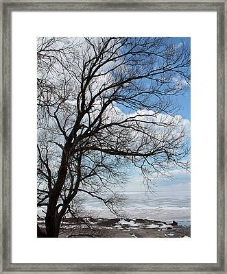 Framed Print featuring the photograph Lake Erie In March by John Freidenberg