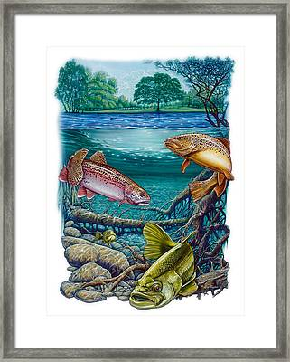 Lake Fish Framed Print by Larry Taugher