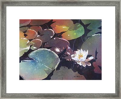 Lake Garden Framed Print by Kris Parins