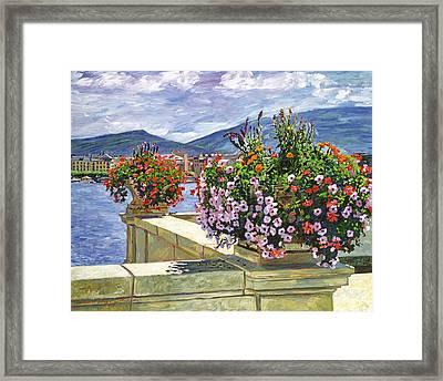 Lake Geneva Beauty Framed Print by David Lloyd Glover