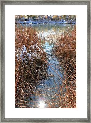 Framed Print featuring the photograph Lake Glitter by Diane Alexander