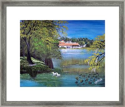 Lake Hollingsworth Landscape Framed Print