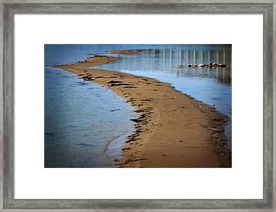 Lake Huron Shore Framed Print by Scott Hovind