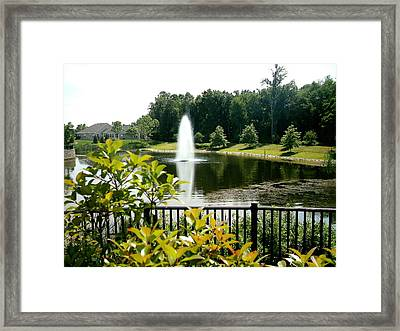 Lake In Bloom Framed Print