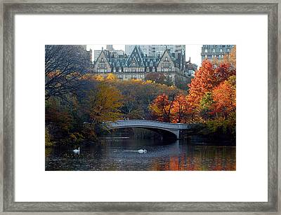Lake In Central Park Framed Print by Yue Wang