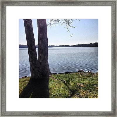 Lake In The Summer Framed Print