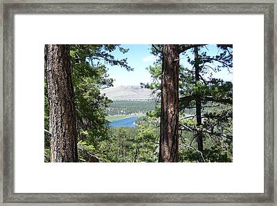 Lake In The Woods Framed Print
