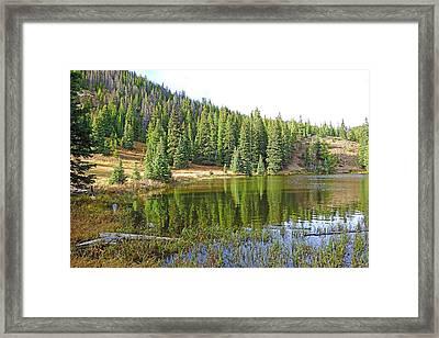 Lake Irene In Autumn Study 13-2 Framed Print