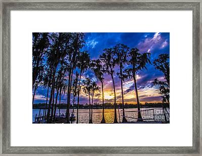 Lake Life Framed Print by David Morgan