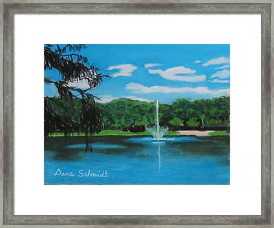 Lake Lilly In Maitland Framed Print