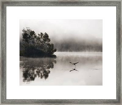 Lake Logan Fog And Heron - Flight Framed Print