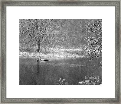 Lake Lois Framed Print