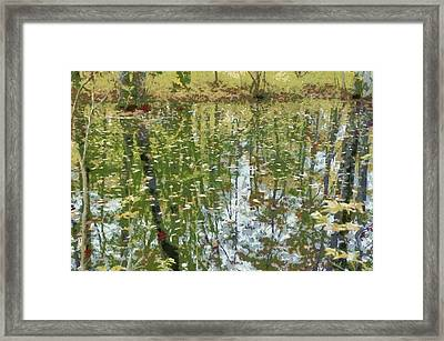 Lake Luster Framed Print by Aleksander Rotner