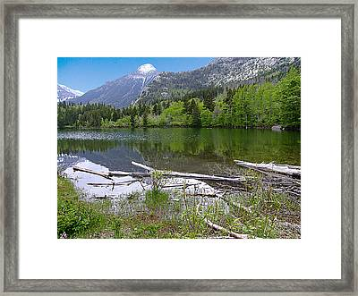 Lake Maskinonge Sunny Day Framed Print by George Cousins