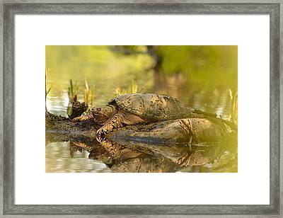 Lake Master Framed Print