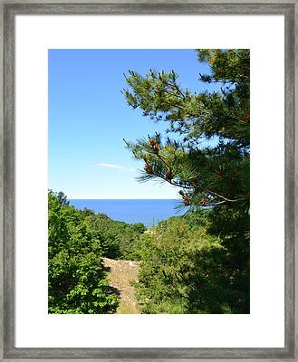 Lake Michigan From The Top Of The Dune Framed Print by Michelle Calkins