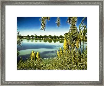 Lake Mindon Campground California Framed Print by Bob and Nadine Johnston