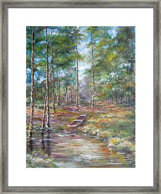 Lake Murray #2 Framed Print