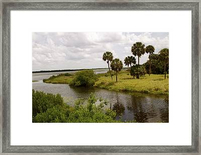 Lake Myakka Framed Print