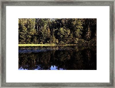 Lake O Law Framed Print