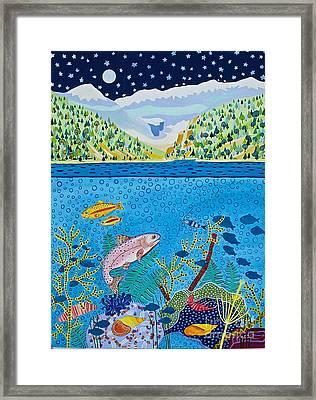 Lake Of Little Fishes Framed Print by Virginia Ann Hemingson