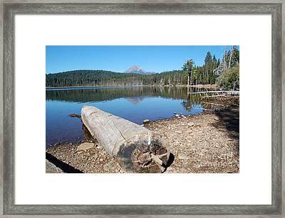 Framed Print featuring the photograph Lake Of The Woods 3 by Debra Thompson