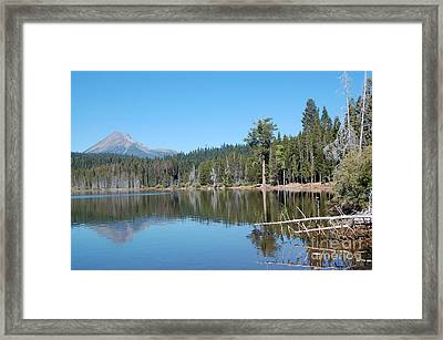 Framed Print featuring the photograph Lake Of The Woods 4 by Debra Thompson